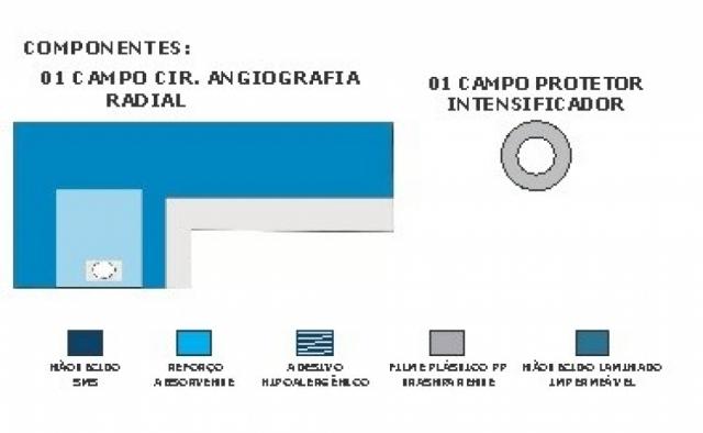 Campo Angiografia Radial